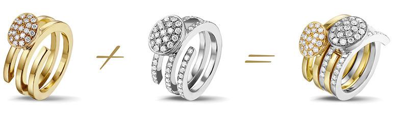 Aerts Collection: de Elegant ringen